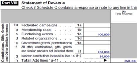 Part VIII Form 990 Reporting